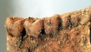 Koronavirüsten ölen kişiyi defnederken buldular! Part İmparatorluğu'na ait