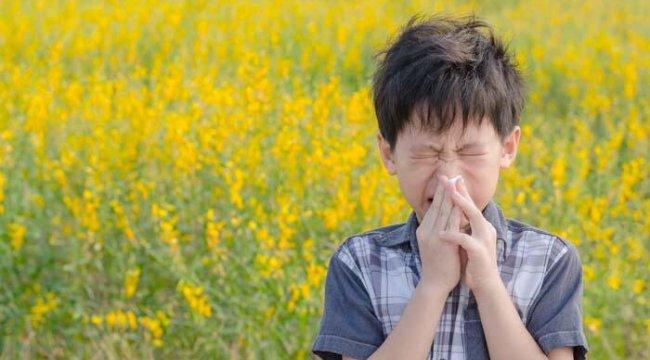 Bahar alerjisini soğuk algınlığı ile karıştırmayın!