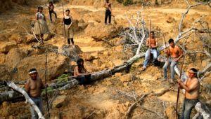 Brezilya'da ordu Amazon ormanlarını korumaya hazırlanıyor