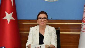 Bakan Pekcan: Türk Eximbank 380 milyon avro kredi sağladı